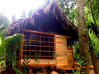 Cocao Rainforest Lodge Cabanas at bnb belize
