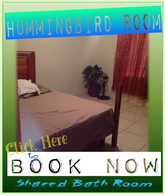 https://sites.google.com/site/bnbbelize2/rooms/coc%20Hummingbird%20Room%20book.jpg
